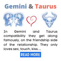 Gemini-and-Taurus