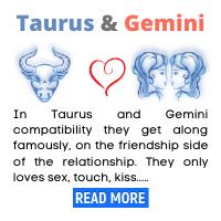Taurus-and-Gemini