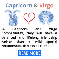 Capricorn-and-Virgo